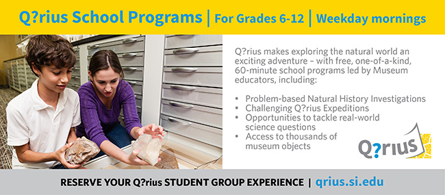 Q?rius school programs