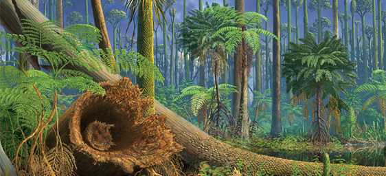 Carboniferous forest illustration