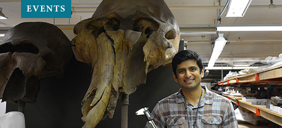 Events - Forgotten Elephants with Advait Jukar