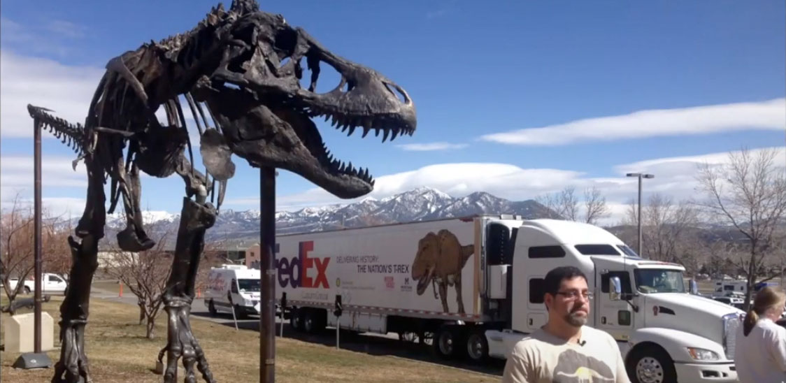 Transporting the T. rex skeleton