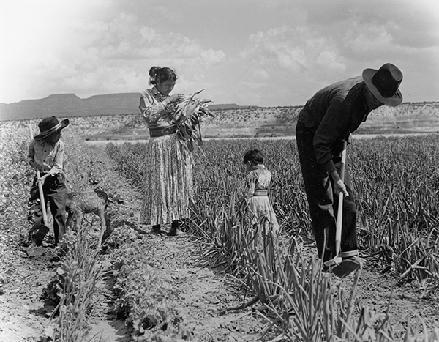 Navajo family farming