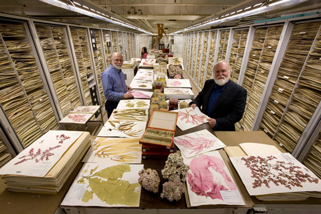 Botany staff with Collections