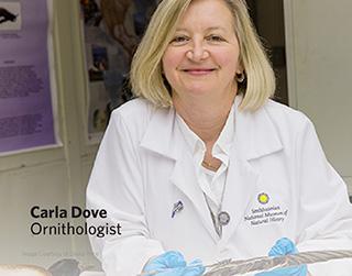 Dr. Carla Dove